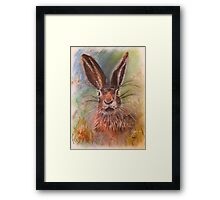 Hare (Jack Rabbit) in The Grass Framed Print