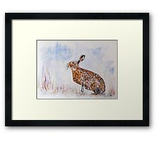 Hare (Jack Rabbit)  in a Snow Shower Framed Print