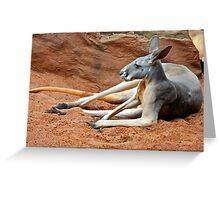 Relaxing Kangaroo Greeting Card