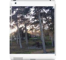 Presidio Drive By, SF iPad Case/Skin