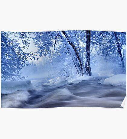 winter wonders Poster
