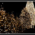 Christmas Lights - Lac Leamy Casino by Yannik Hay