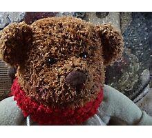 A Christmas Bear Photographic Print