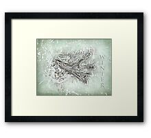 In the frozen grip of winter Framed Print
