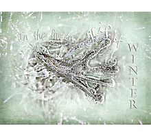 In the frozen grip of winter Photographic Print
