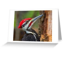 Close encounter Greeting Card