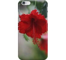 Red Hybiscus iPhone Case/Skin