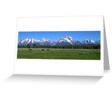 Grand Teton Buffalo Greeting Card