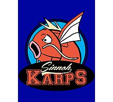 The Sinnoh Karps Photographic Print