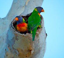 The Love Nest by Rebecca Holman