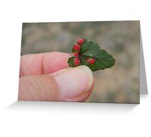 Parasite? Greeting Card
