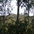 Crookwell hills 3 by twawki
