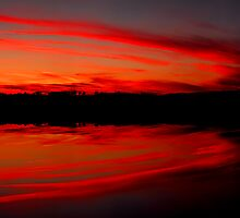 Still Waters Reflect All by Tim Scullion