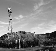 Colossal Cave Windmill by James2001