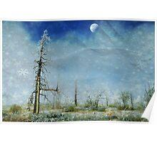 """ Walking in a winter wonderland "" Poster"