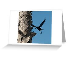 Bird wings Greeting Card