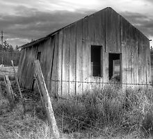 Shack on the Fence Line II by Dale Lockwood