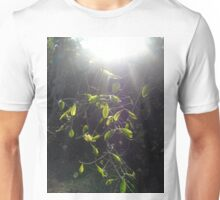 Fantasy celtic sun light leaves green woodland miracle elven fairy nature forest  Unisex T-Shirt