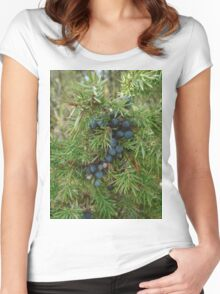 Juniper berries woodland autumn forest greenery green cosy cozy boho  Women's Fitted Scoop T-Shirt