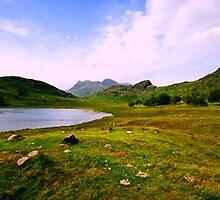 The Tarn by John Hare