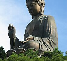 Po Lin Buddha by IslandImages