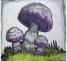 Purple Mushrooms Photographic Print