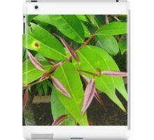 green spider on leaf iPad Case/Skin