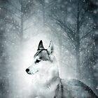 Snow Wolf by Svetlana Sewell