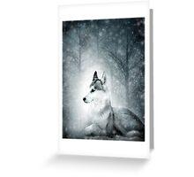 Snow Wolf Greeting Card