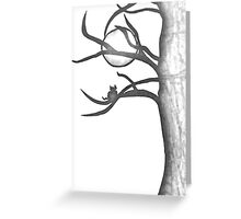 Cat in Tree, White. Greeting Card
