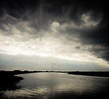 Like a Fiend in a Cloud by Richard Pitman