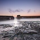 Craster Harbour by mattcattell
