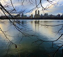 NYC012 by Svetlana Sewell
