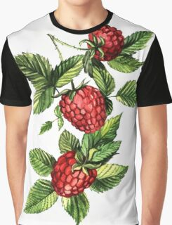 Raspberries Graphic T-Shirt