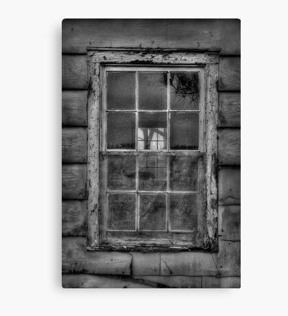Window VI Canvas Print