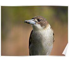 fence bird Poster