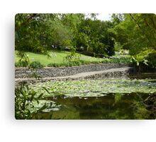 Lily pond, Brisbane Botanic Gardens, Queensland Canvas Print