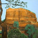 Sedona Rocks 3 by Heberto   G. Cavazoz