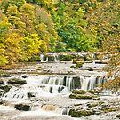 Upper Aysgarth Falls by Stephen Knowles
