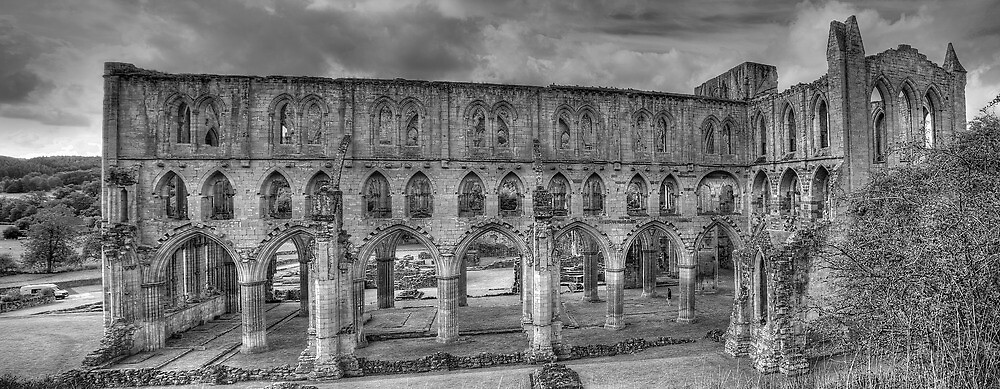 Rievaulx Abbey by Neal Petts