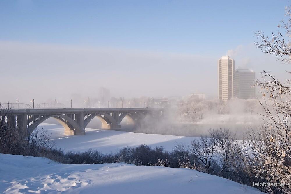 The Broadway bridge, Saskatoon,SK, Canada by Halobrianna