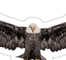 Large Winged Flying Eagle Sticker