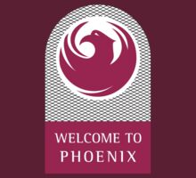 Welcome to Phoenix, Arizona Road Sign by worldofsigns