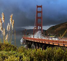 Morning Downpour on the Golden Gate by Jennifer Bailey