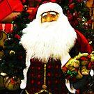 Father Christmas by shutterbug2010