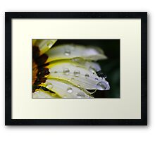Raindrops all in a Row Framed Print