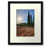 Cypresses Watching over a Dry Field Framed Print