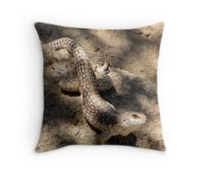 Desert Iguana Throw Pillow