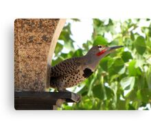 (BFF's) Gilded Flicker ~ Male  Canvas Print