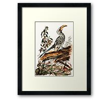 Master Of All He Surveys Framed Print